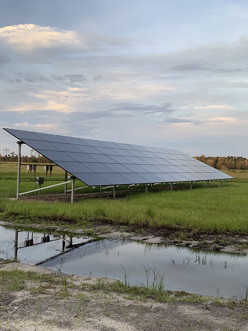 solar panels used for agriculture
